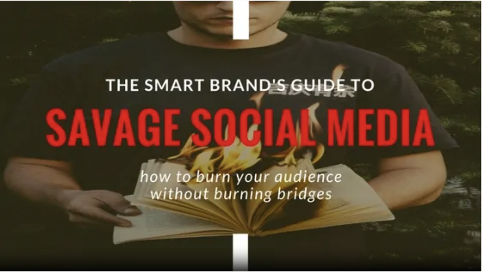 The Smart Brand's Guide to Savage Social Media blog post